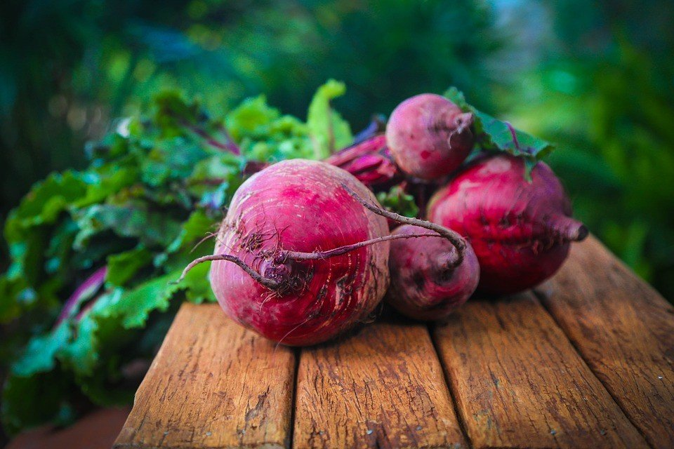 Beet Vegetables that Grow in Shade