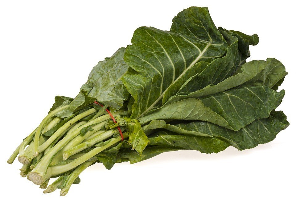 Vegetables that Grow in Shade - collard greens