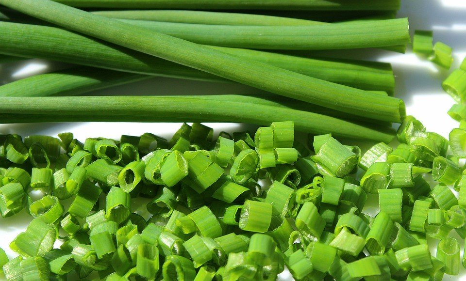 Perennial Vegetables Chives
